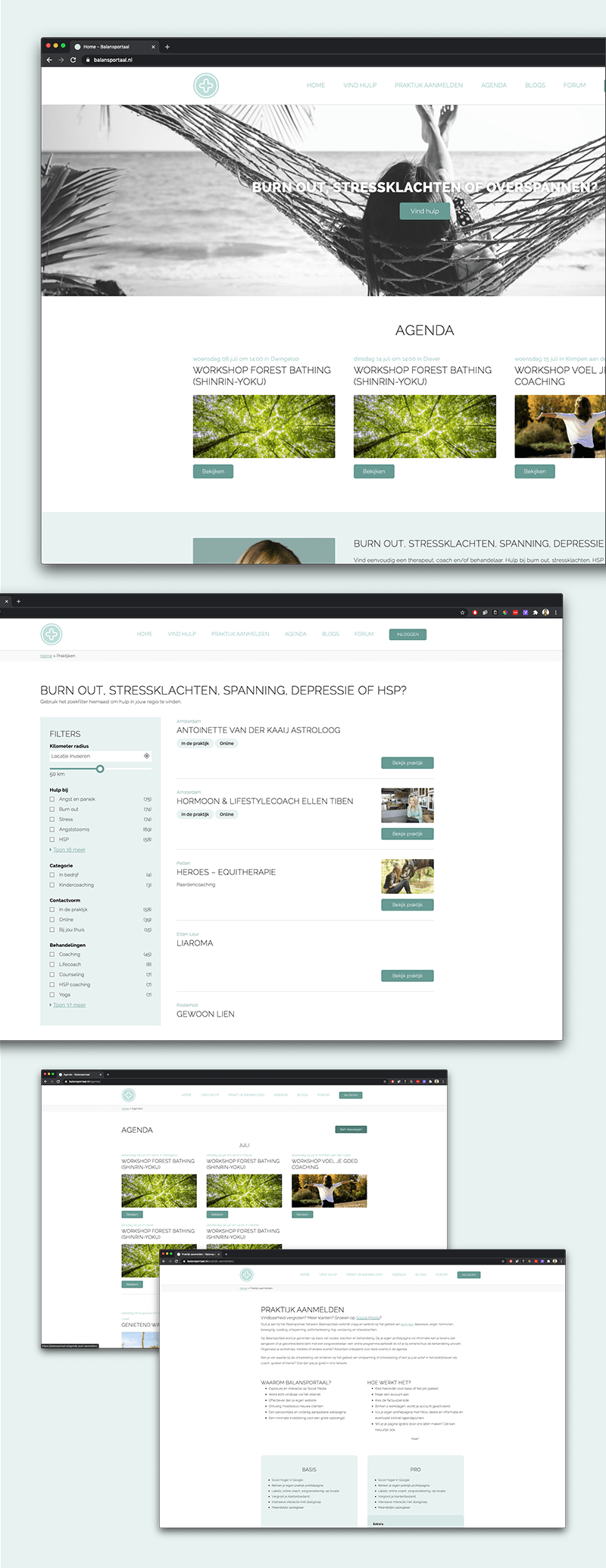 Webdesign Balansportaal.nl